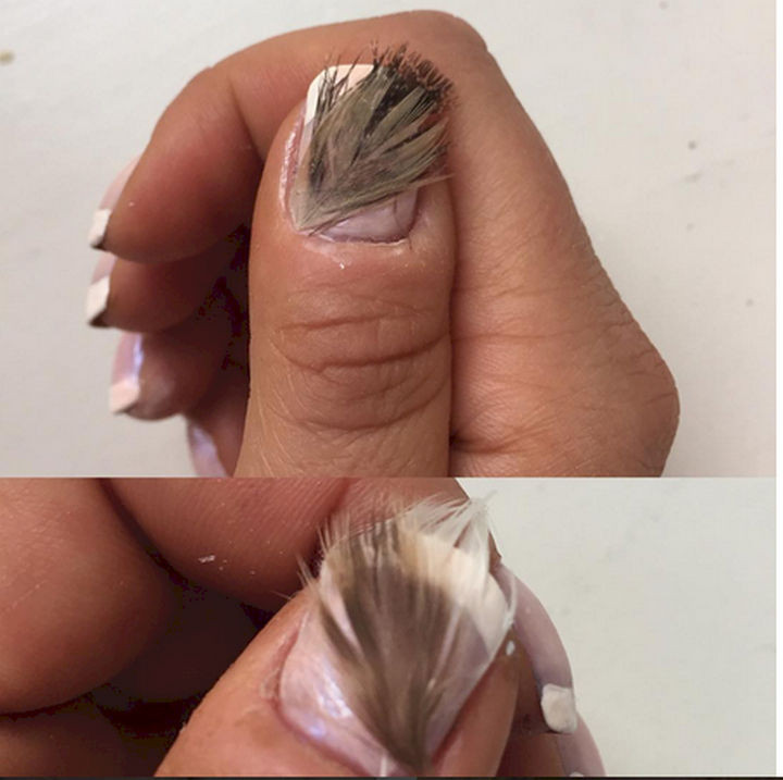 18 Feather Nail Art Designs - Bring on the feathers.