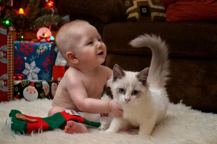 46 Happy Images - This baby's first Christmas with his fluffy new friend.