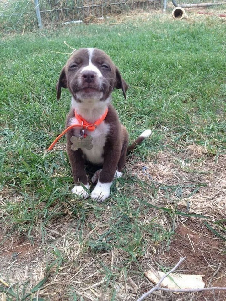 46 Happy Images - This little darling with the most adorable smile.