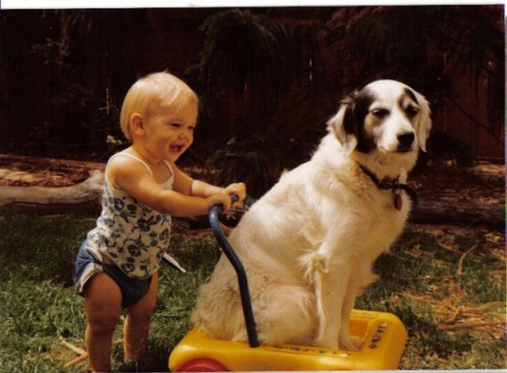 46 Happy Images - This baby learning to walk by pushing around his best friend.