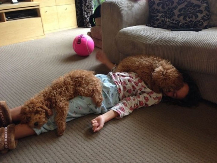 46 Happy Images - These dogs showing some love for their human.