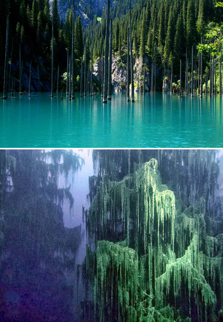 10 Amazing Nature Pictures - Lake Kaindy's underwater forest.