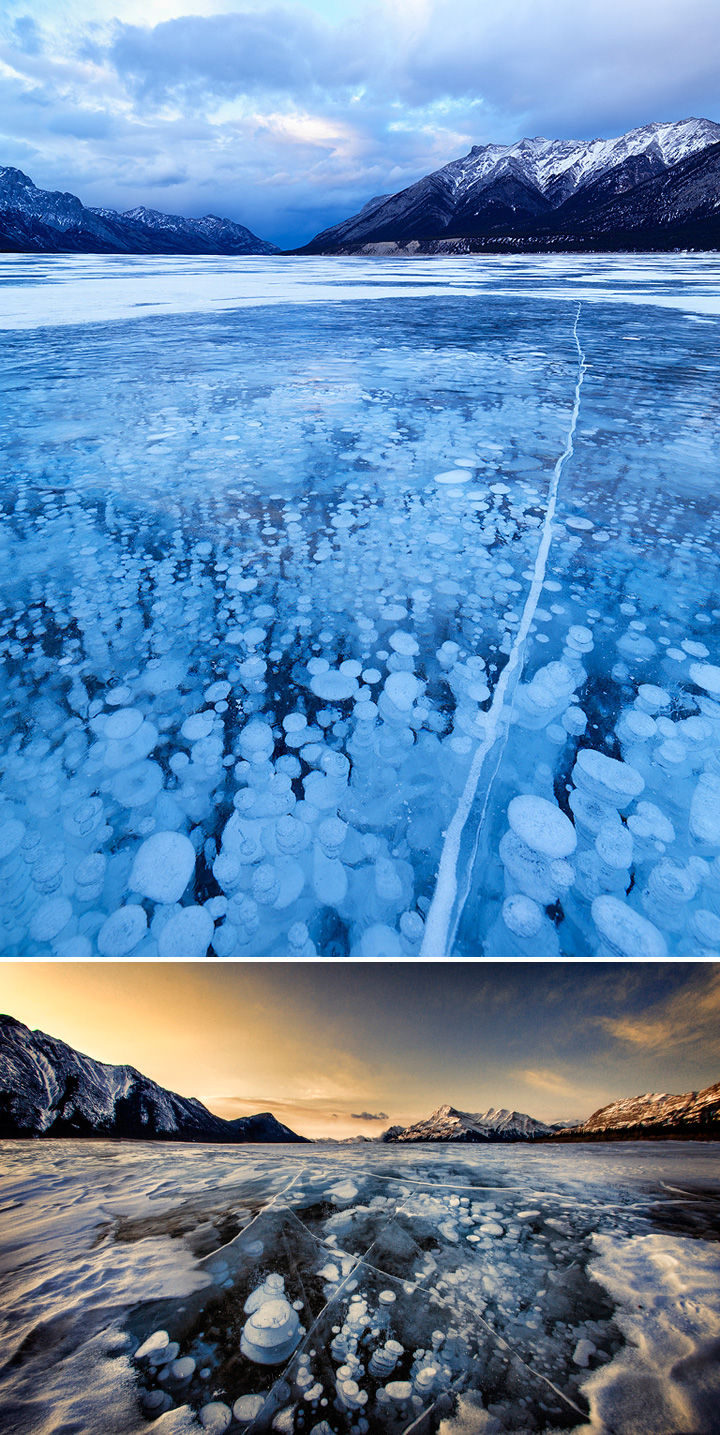 10 Amazing Nature Pictures - Frozen air bubbles in Abraham Lake in Alberta, Canada.