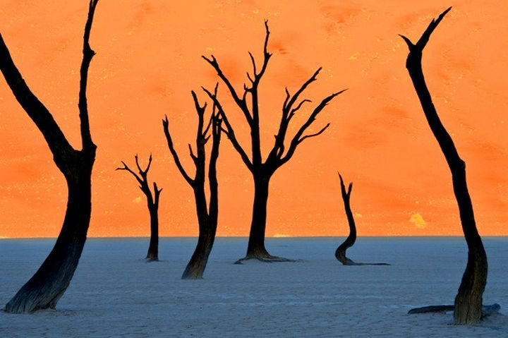 10 Amazing Nature Pictures - The Namib Desert.
