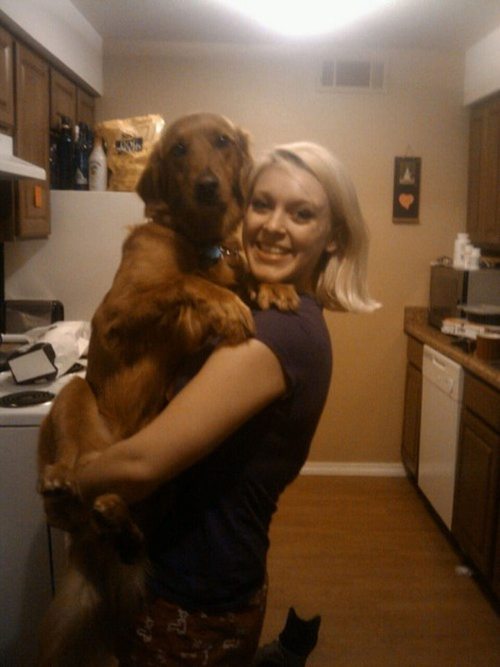 12 Huge Dogs That Still Think They Are Puppies - She loves to be in mommy's arms.