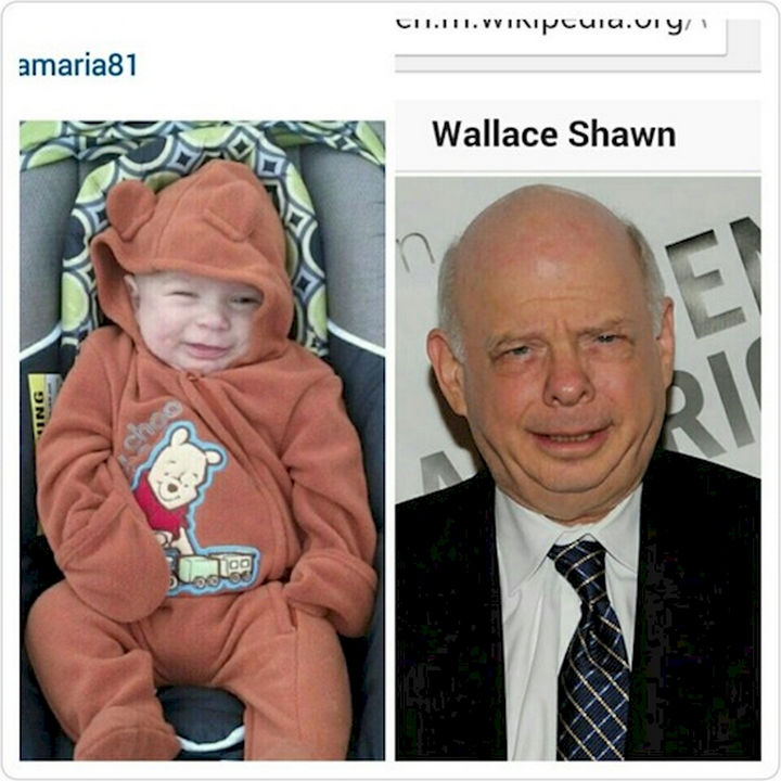 13 Babies That Resemble Celebrities or Something Else - Will the real Wallace Shawn please stand up? I can't tell the difference!