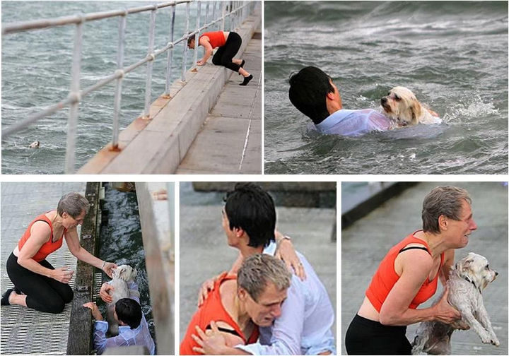15 Incredible Photos Will Warm Your Heart - A young man jumping into the frigid waters to rescue an owner's Shih Tzu that accidentally fell into the water.