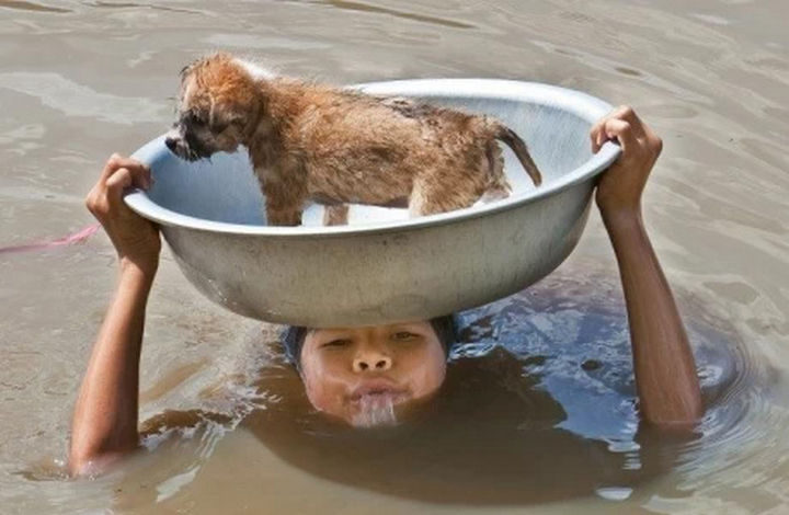 15 Incredible Photos Will Warm Your Heart - A young boy keeping his dog safe during a flood.