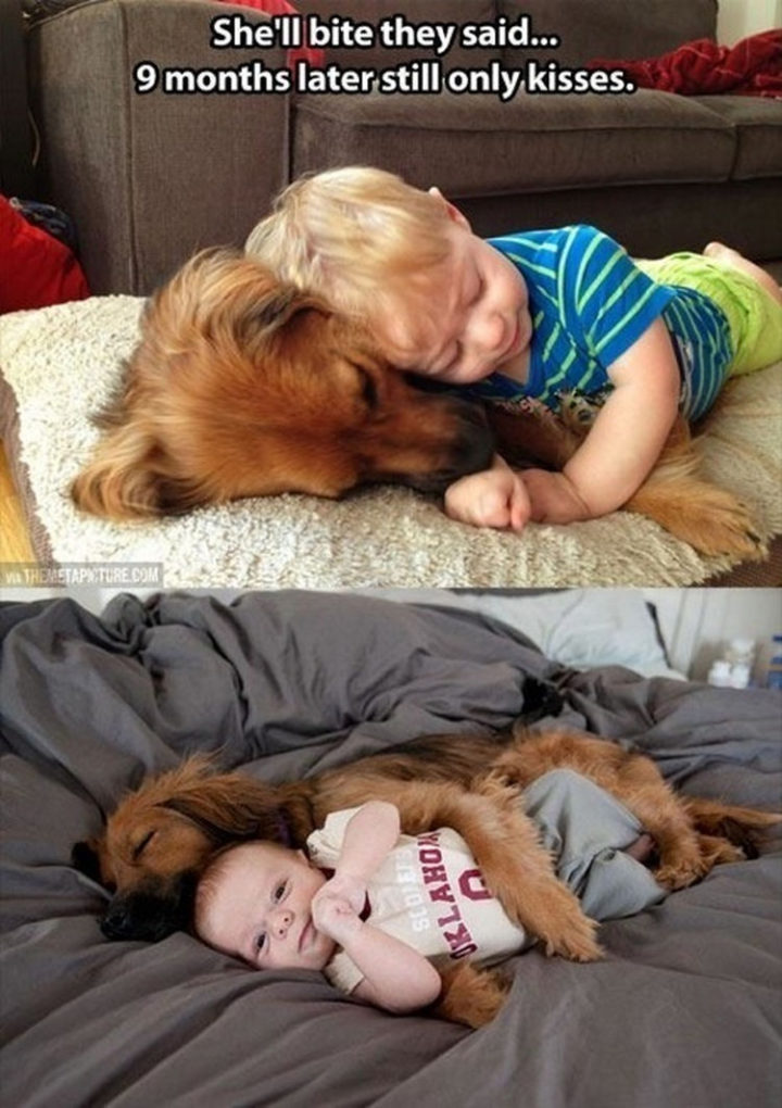 30 Things Only Dog Owners Will Understand - Dogs love kids.