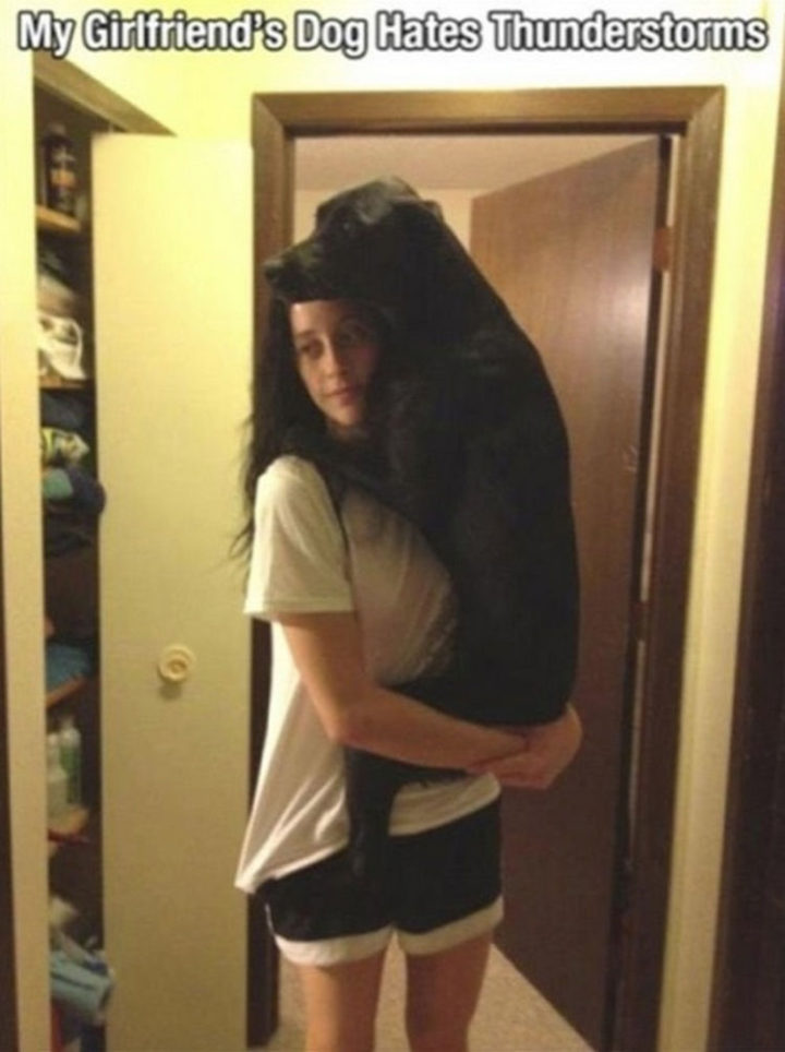 30 Things Only Dog Owners Will Understand - They still don't like thunderstorms.