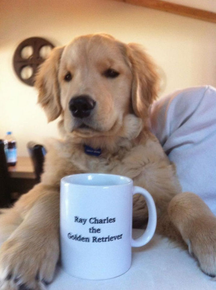 What better way to wake up than waking up to cold water served in his own personalized mug.
