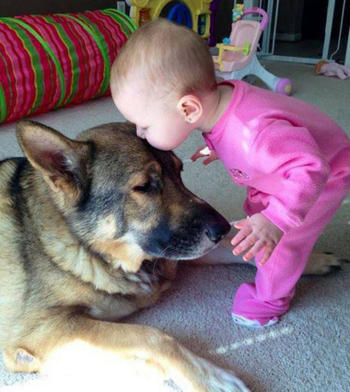 14 Dogs and Babies - A kiss on the forehead is a good argument about why kids need pets.