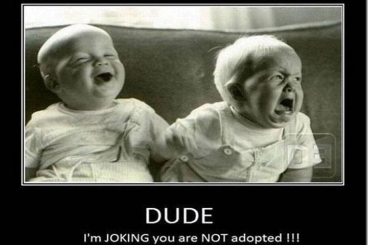 """""""DUDE! I'm JOKING. You are NOT adopted!!!"""""""