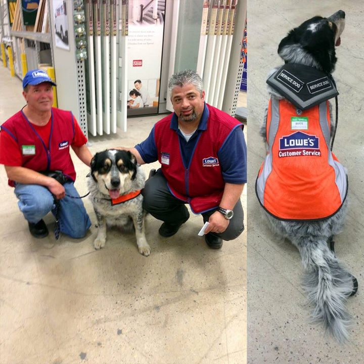 A Man With a Disability and Service Dog Couldn't Find Work. What One Company Did Is Awesome!