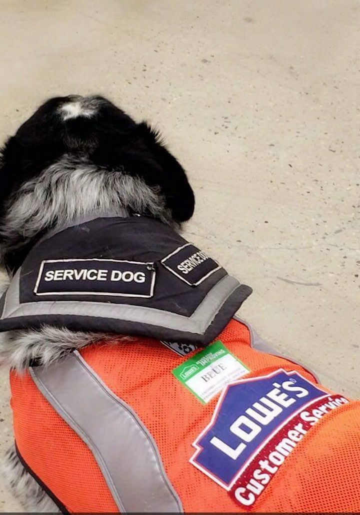 They gave the new employee some training and together with his trusty sidekick, he will provide unmatched customer service at Lowe's in Regina, Saskatchewan.