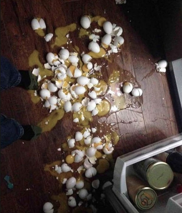28 People Having a Bad Day - Scrambled eggs anyone?