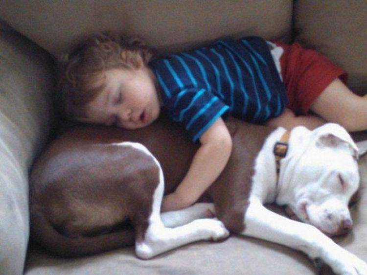 25 Sleepy Kids Sleeping In The Strangest And Most Adorable