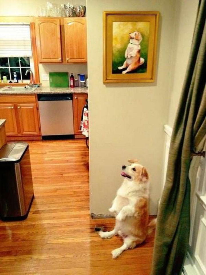 26 Life Lessons We Can Learn From Animals - Take the time to appreciate art.