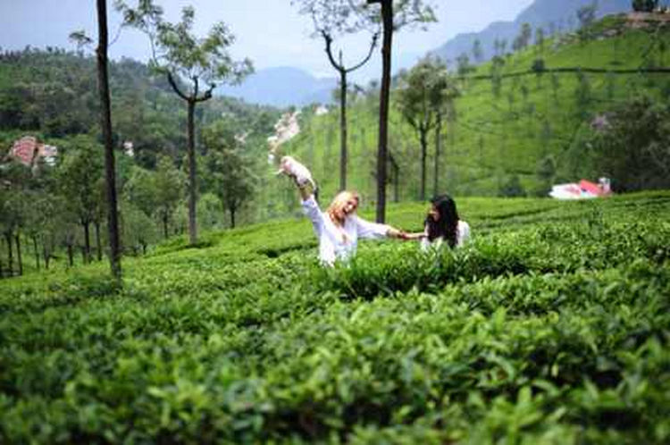 They also visited tea plantations.