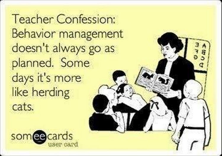 67 Hilarious Teacher Memes - Let me tell you, herding cats is NOT easy.