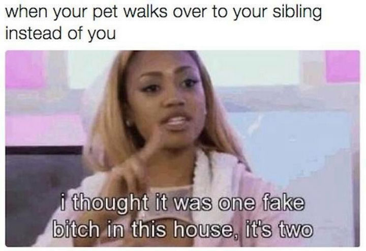 19 Photos of Growing Up With Siblings - When you make your pets choose.
