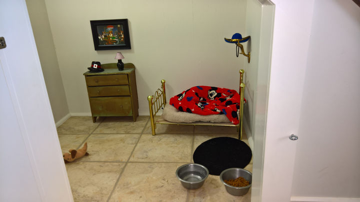 What he was looking at was an adorable Harry Potter-themed room that his aunt McCall built for Poncho the dog.