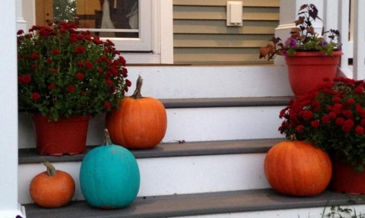 Food Allergy Research & Education (FARE) launched The Teal Pumpkin Project nationwide in 2014.