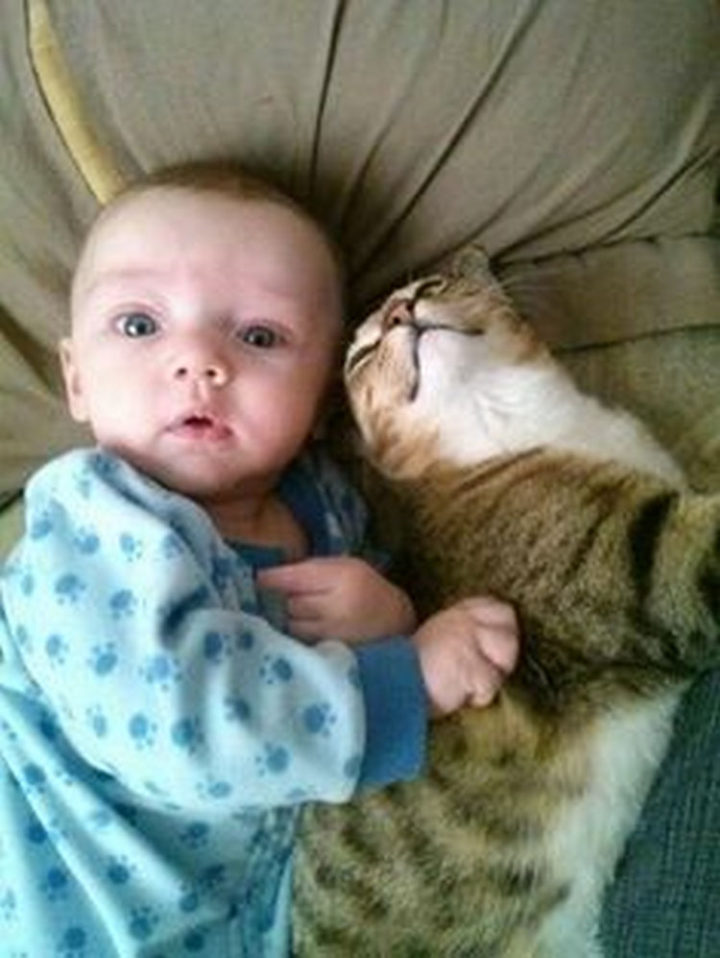 """21 Cats Babysitting Babies - """"My back is itchy, can you scratch it?"""""""