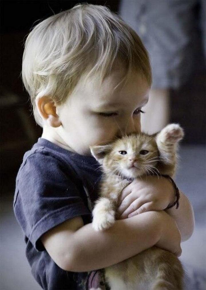 21 Cats Babysitting Babies - Hugs and kisses.