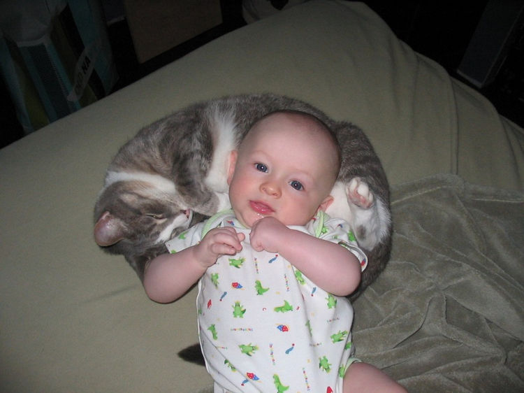 "21 Cats Babysitting Babies - ""It may not be your naptime, but it is mine!"""