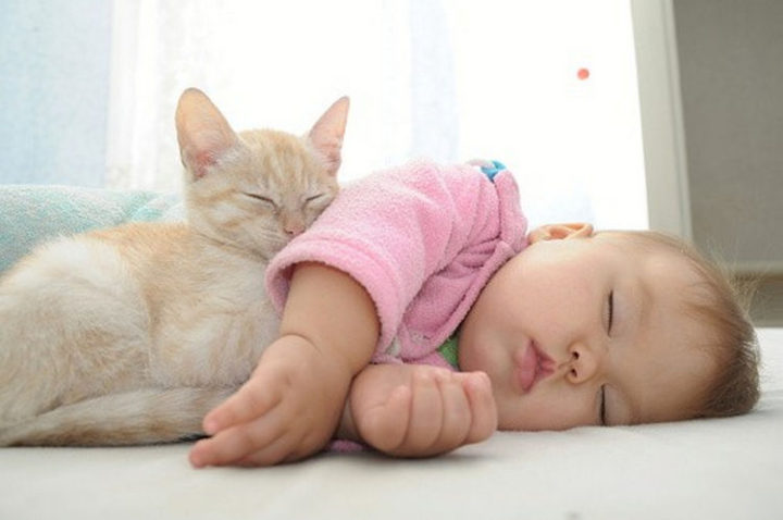 """21 Cats Babysitting Babies - """"You've got a friend in me."""""""
