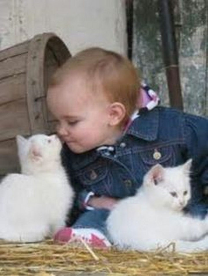 """21 Cats Babysitting Babies - """"Give me a kiss little cutie."""""""