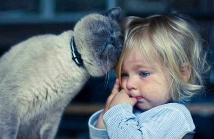 """21 Cats Babysitting Babies - """"I feel so safe next to you."""""""