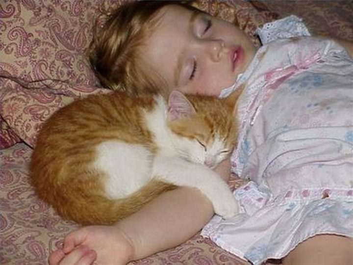 """21 Cats Babysitting Babies - """"I could stay like this all day."""""""