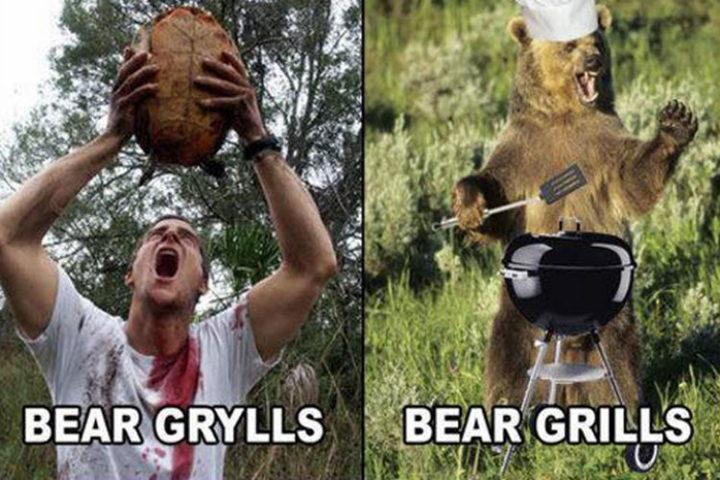 55 Hilariously Funny Celebrity Name Puns - Bear Grylls.