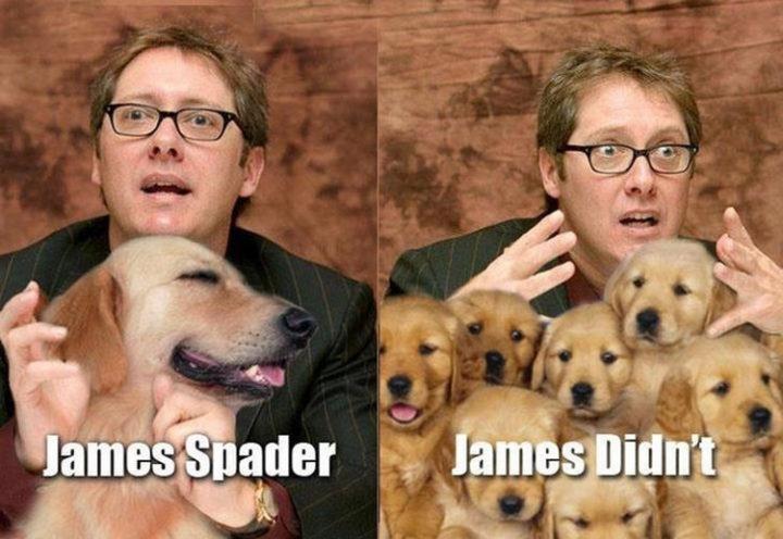 55 Hilariously Funny Celebrity Name Puns - James Spader.