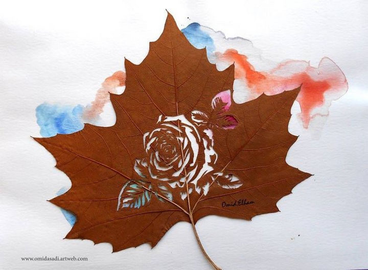 Rose in a leaf with a splash of color.