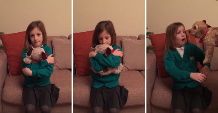 Little Girl Gets a New Puppy for Christmas.