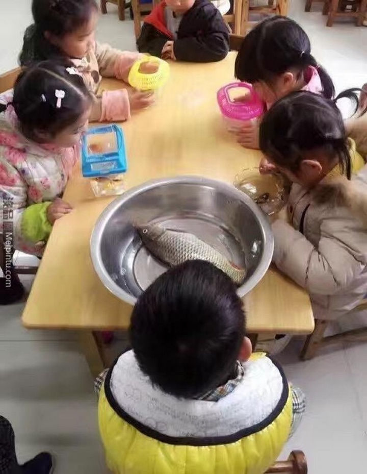 18 Kids Taking Instructions Too Literally - Bring a fish to school day.