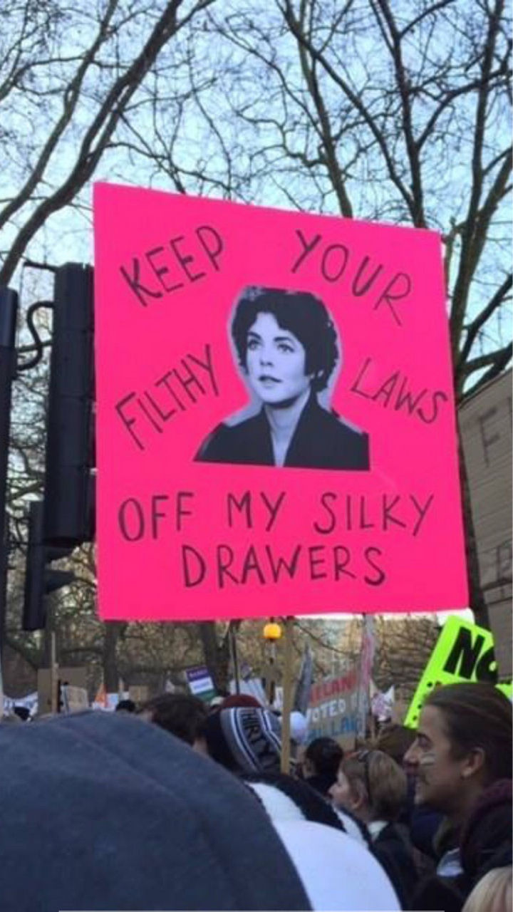 "20 Epic Women's March Signs - ""Keep your filthy laws off my silky drawers."""