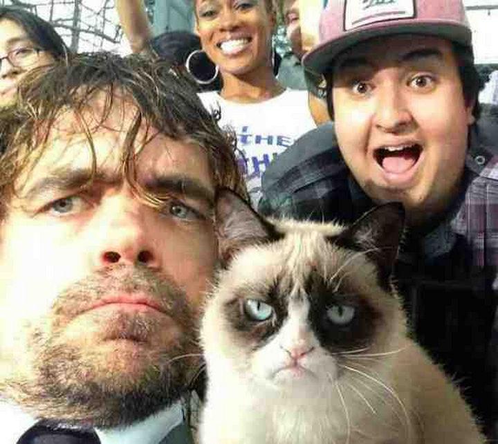An epic selfie of Peter Dinklage and Grumpy cat.