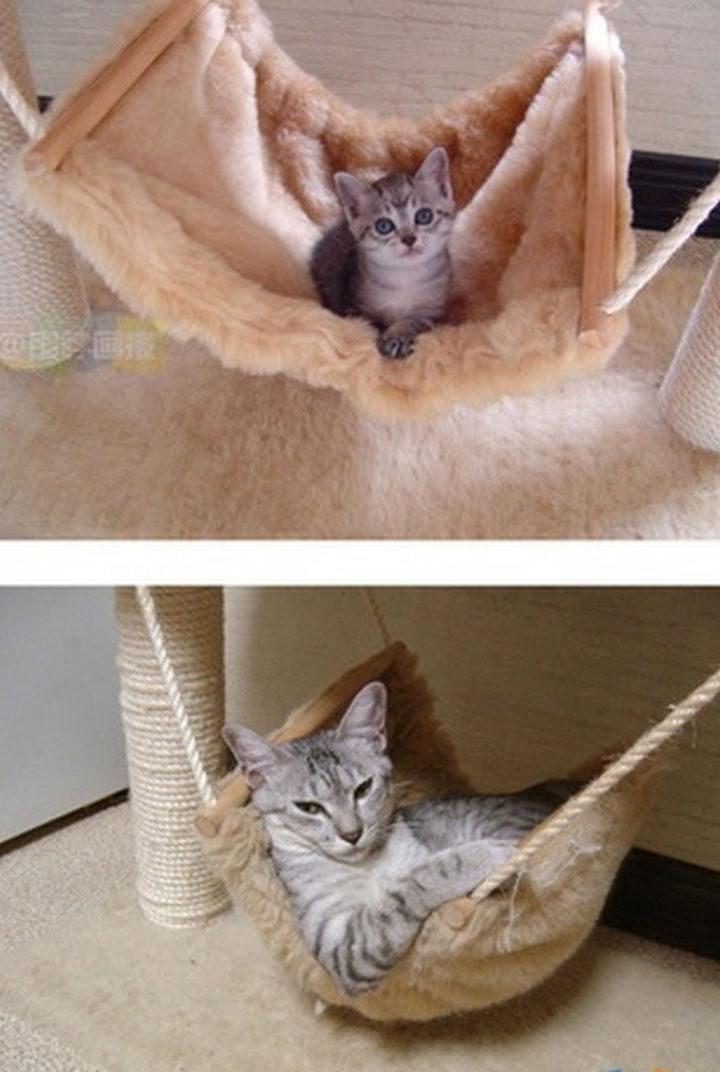 Still lovin' the hammock!