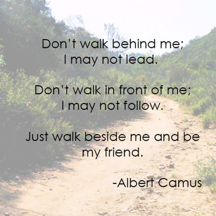 "75 Amazing Relationship Quotes - ""Don't walk in front of me; I may not follow. Don't walk behind me; I may not lead. Just walk beside me and be my friend."" - Albert Camus"