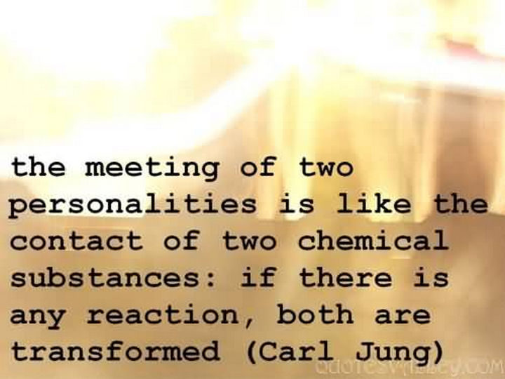 """The meeting of two personalities is like the contact of two chemical substances: if there is any reaction, both are transformed."" - Carl Jung"