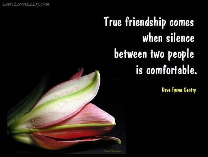 """True friendship comes when the silence between two people is comfortable."" - David Tyson Gentry"
