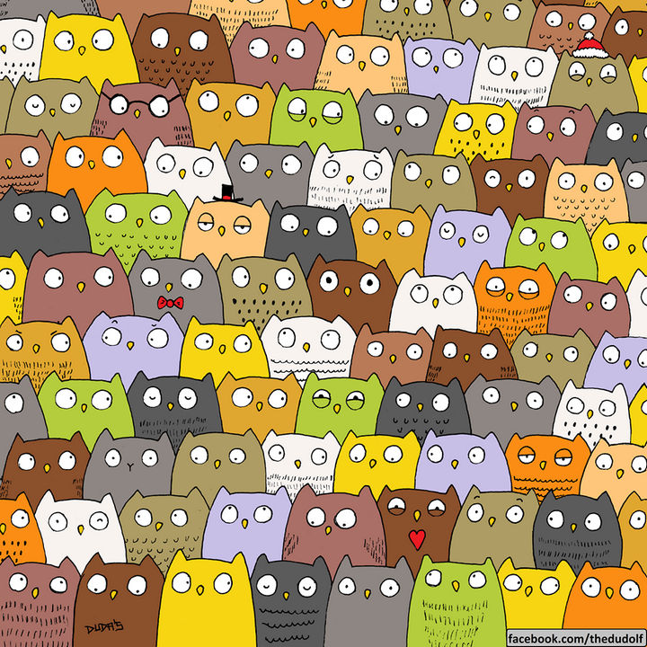 Can you find the hidden cat?