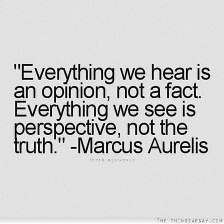 "10 Perspective Quotes - ""Everything we hear is an opinion, not a fact. Everything we see is perspective, not the truth."""