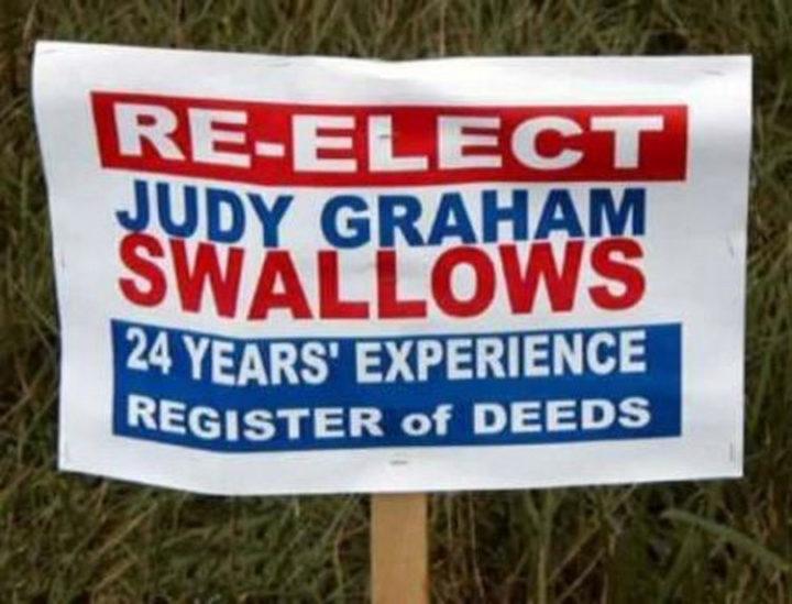 Funny Names - Judy Graham Swallows.