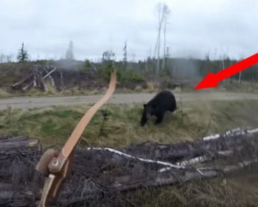 A Hunter Spots a Black Bear but Before He Has a Chance, the Bear Charges Towards Him!