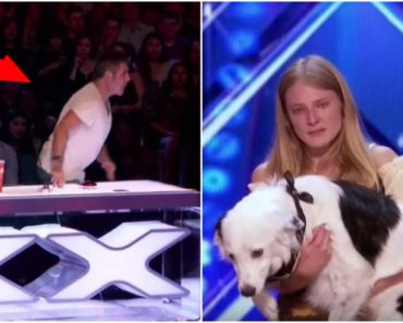 She Performs a Pirate-Themed Dance Routine with Her Dog and the Crowd Loves It. Then, Simon Does THIS!